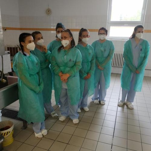 Alternativní popis - Miniexkurze v nemocniční kuchyni